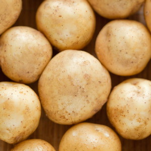 Potato close up